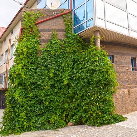 Дома для престарелых в жуковском входные двери в частный дом цены в москве